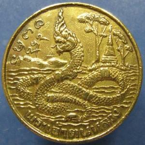 เหรียญพระเจ้าตนหลวง (เหรียญพญานาค หลังเสมาธรรมจักร)