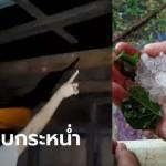 พายุฤดูร้อนถล่มโคราช ลูกเห็บกระหน่ำ 4 หมู่บ้าน บ้านเรือนพังยับร่วม 30 หลังคาเรือน